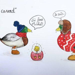 expressions froid de canard